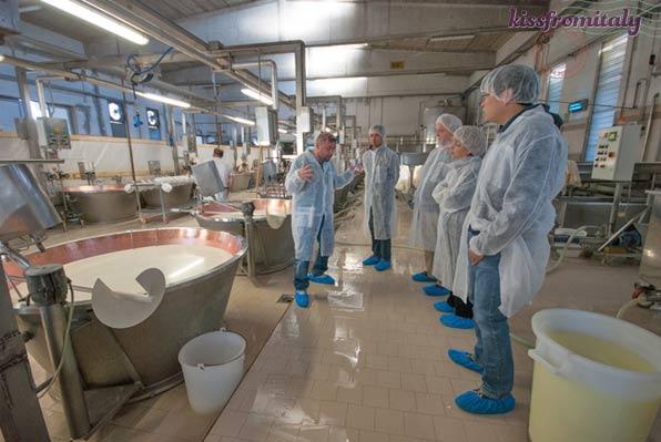 Bologna Parmesan Cheese Factory Tour